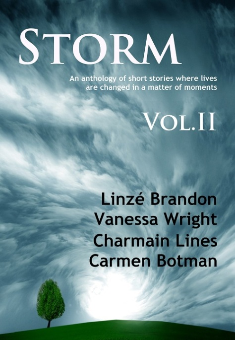 Storm Volume II final small