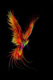 The original art Elsabé VIljoen supplied for the cover of The Flight of the Phoenix